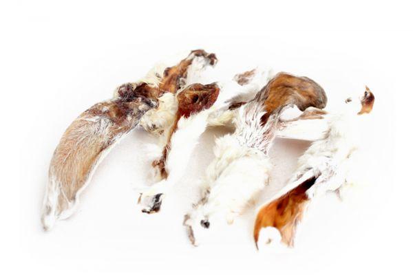 Hasenohren, Kaninchenohren